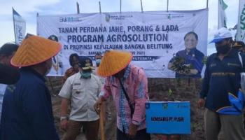 Pemprov Babel dan PT Pusri Tandatangani MOU Program Agrosolution